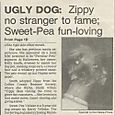 "FT. MYERS NEWS PRESS ""UGLY DOG CONTEST"""