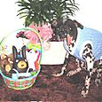 PEE WEE FINDS HIS EASTER BASKET -