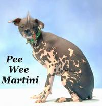 Peeweemartinidog_contest11