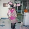 Animal_clinic1995