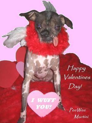 Peeweemartini_valentines_day_200722pink